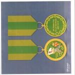 odwzorowanie odznaki VIP 2